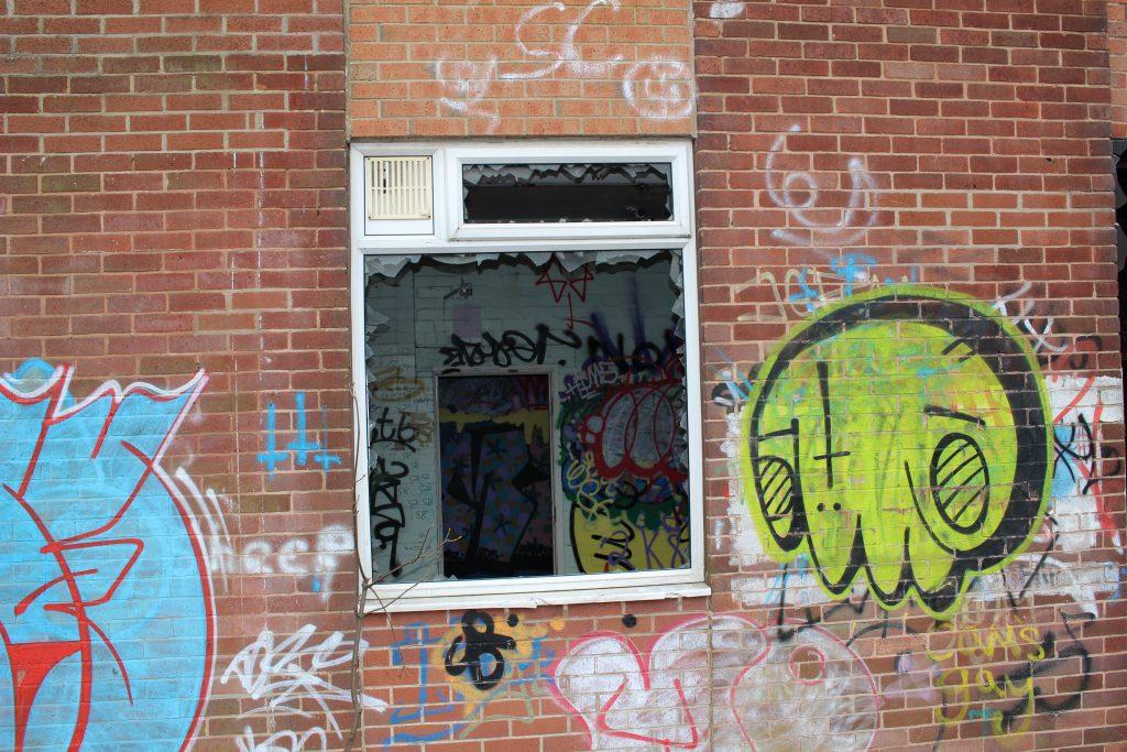 WINDOW DOOR